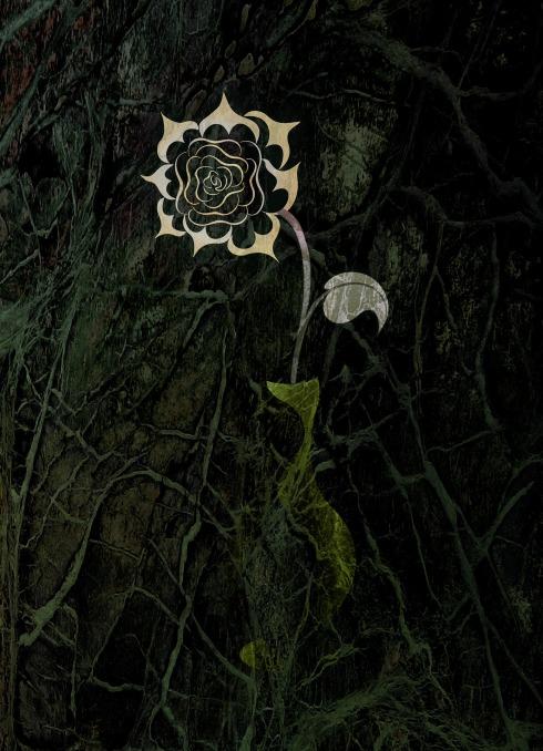 flower-2605462_1920